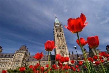 Clădirile Parlamentului Canada (Chevrier, Jeff © Chevrier, Jeff; VisaPro.ca. Toate drepturile rezervate.)